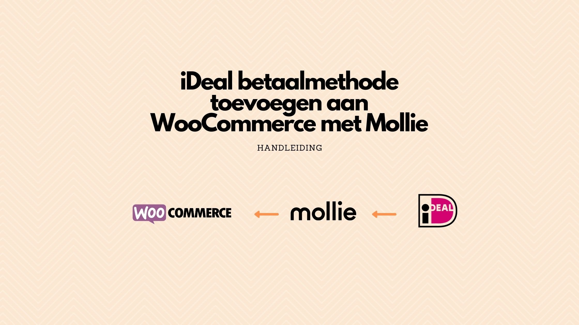 Ideal betaalmethode toevoegen aan WooCommerce WordPress Website
